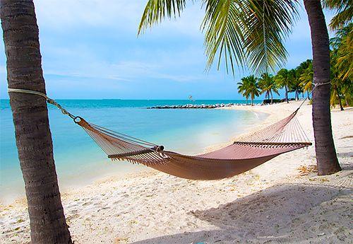 Travel Beach Lounge Chair