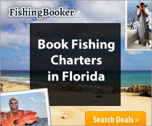 24 best images about florida on pinterest trips things for Fishing treasure island florida