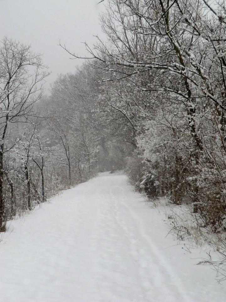 Illinois Southern illinois, Illinois, Science nature