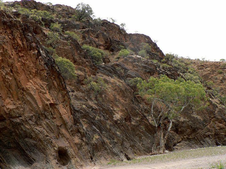 In Parachilna Gorge, South Australia