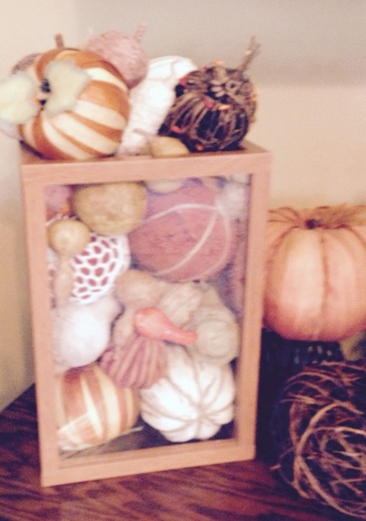 used large wood n plastic container thrift store 1 filled w dried pumpkins n - Large Plastic Pumpkins