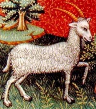 Blogul Dianei: Horoscop Capricorn mai 2014