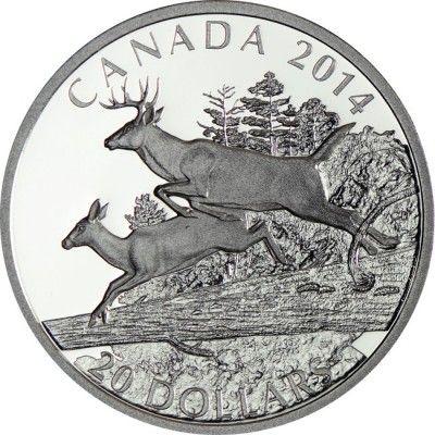 20 Dollar Silber Der Weißwedelhirsch - Gefährten PP