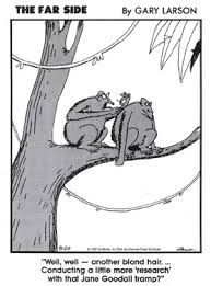 Image result for the far side comics online