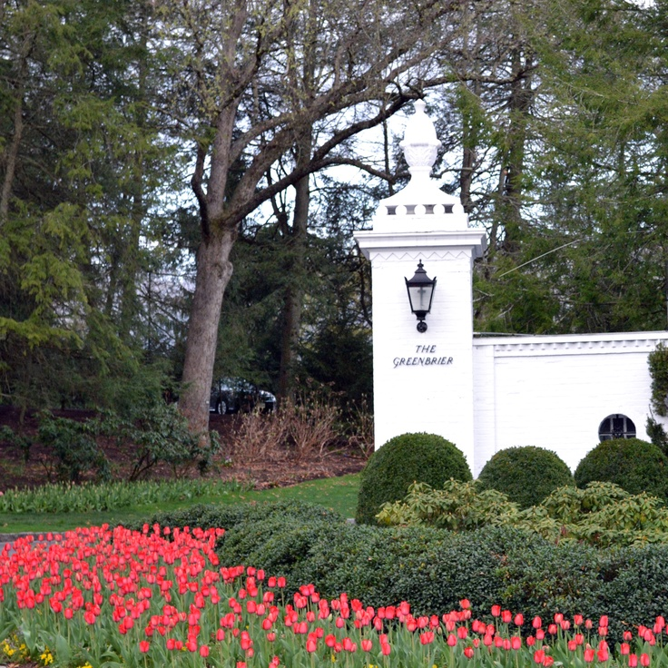 Entrance to The Greenbrier. TULIPS