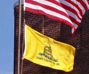 Veterans Sue to Fly 'Don't Tread On Me' Flag in New Rochelle, NY http://www.opposingviews.com/i/politics/veterans-sue-fly-dont-tread-me-flag-new-rochelle-ny