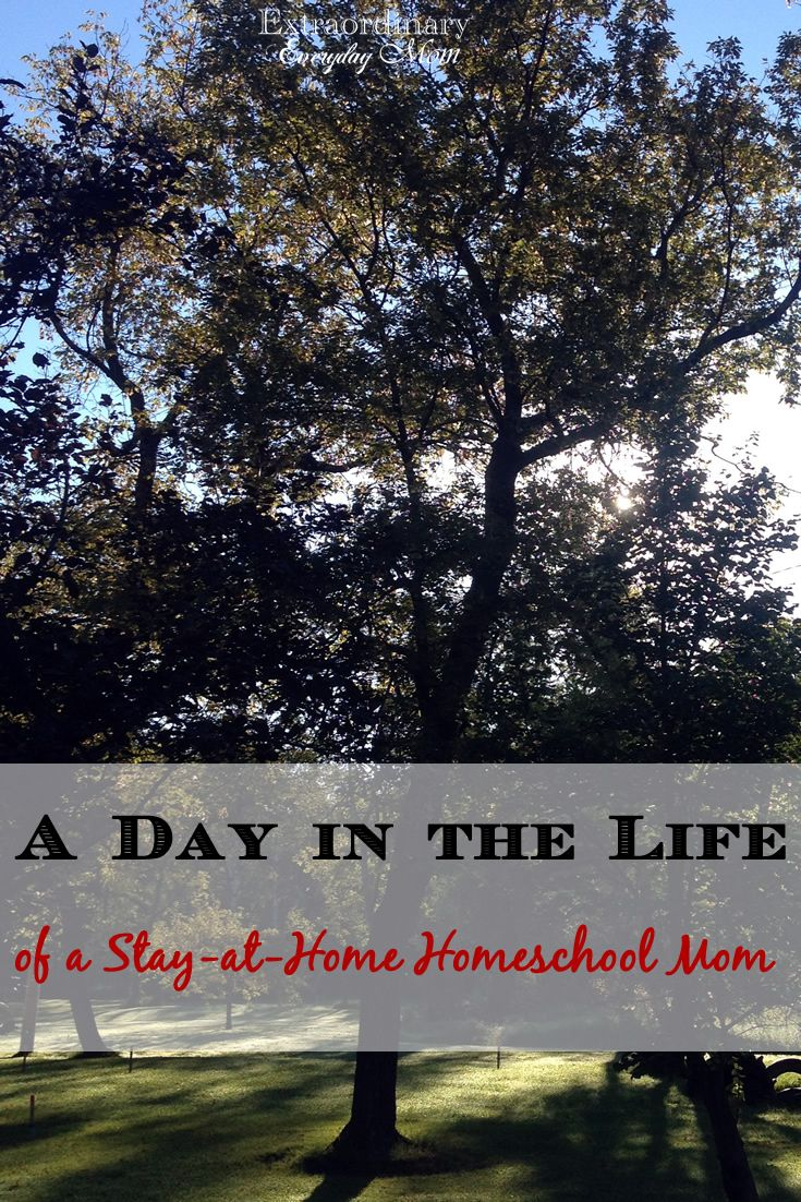 Do you ever wonder what a day in the life of a stay-at-home homeschool Mom looks like? Here is a glimpse into the life of a stay-at-home homeschool Mom.