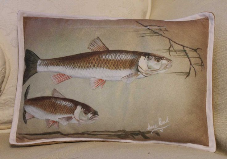 Chub Fishing Gift Course River Angler Art Printed Faux Suede Decorative Small Cushion Pillow Fisherman Fish Original Artwork by TechPerch on Etsy