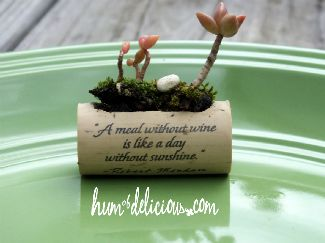 Humofdelicious: horizontal cork planter tutorial