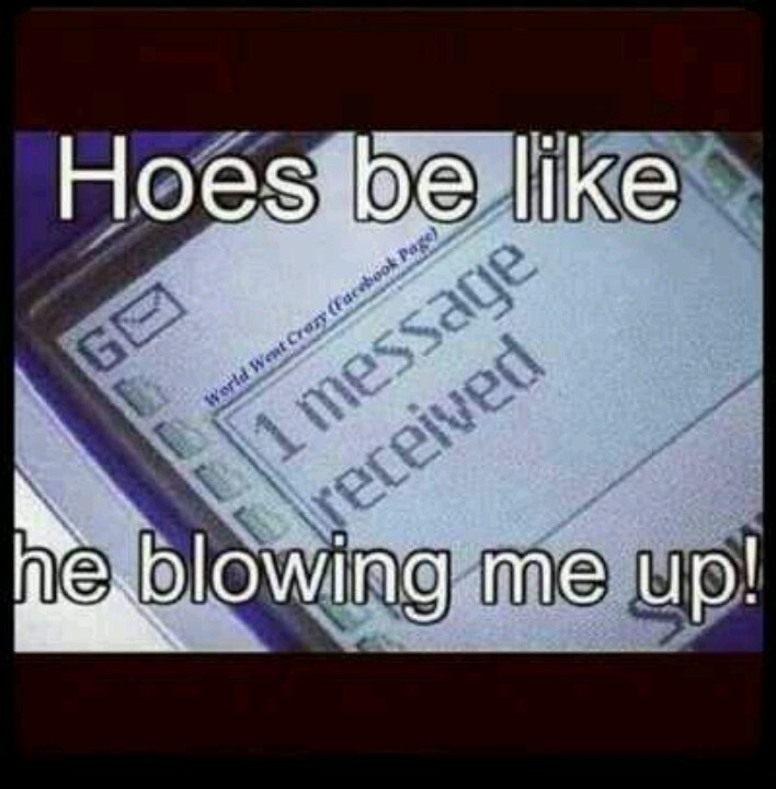 Hoes Be Like Picture Quotes: Hoes Be Like Funny Quotes. QuotesGram