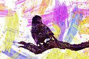 """New artwork for sale! - """" Snake Eagle Circaetus Cinereus by PixBreak Art """" - http://ift.tt/2sRlod7"""