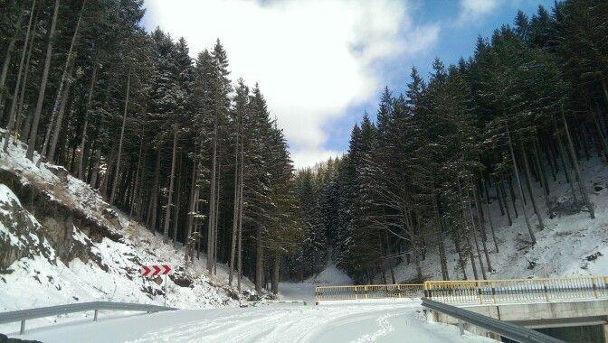Iarna in Rarau