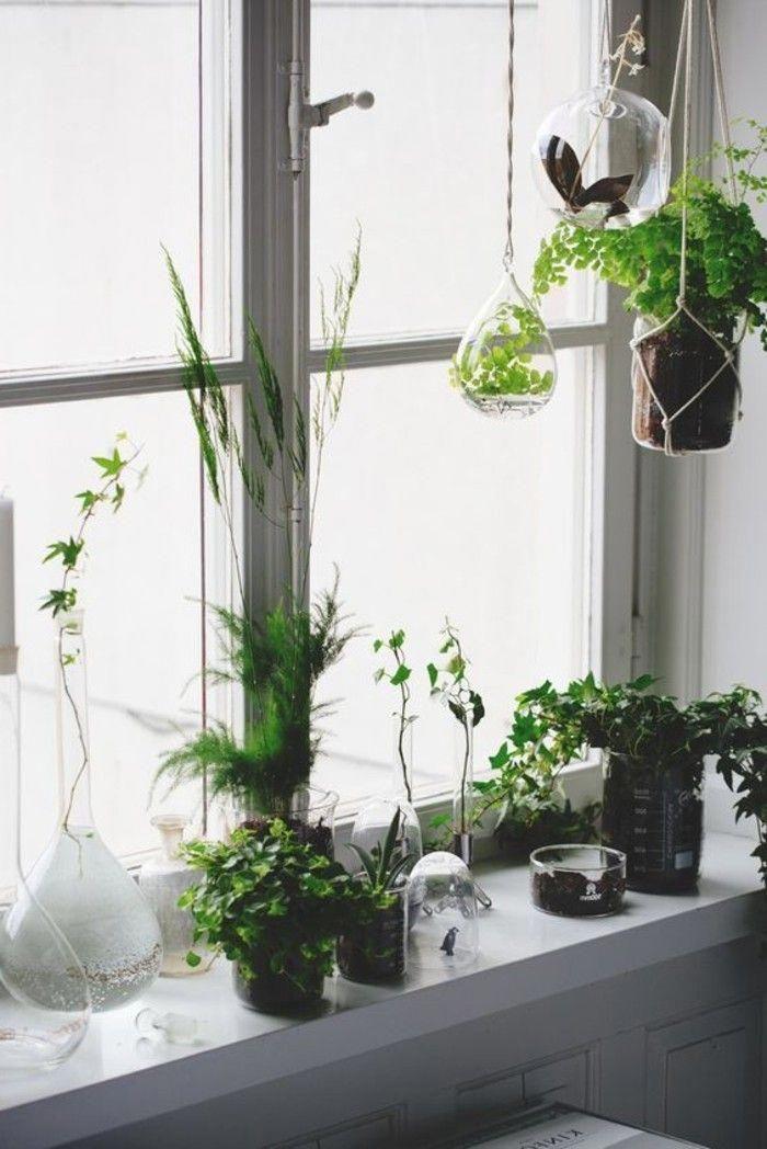 Window Sill Decoration Flower Pots Vases Hang Plants Homeinteriordecorationhangingplants Window Sill Decor Window Sill Decor