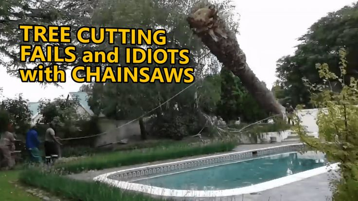 Tree cutting fails and idiots with chainsaws. EPIC COMPILATION. Part 3
