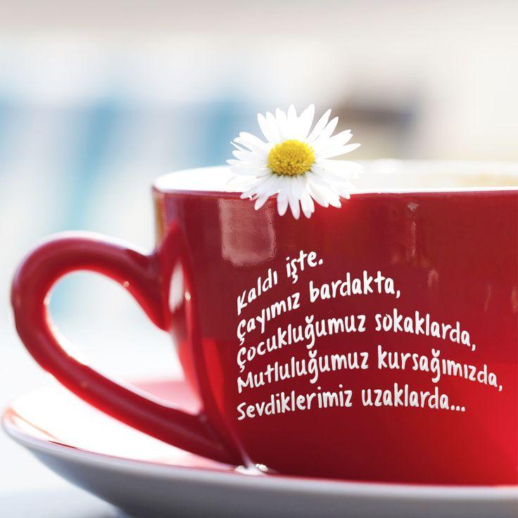 ''Kaldı işte. Çayımız bardakta, Çocukluğumuz sokaklarda, Mutluluğumuz kursağımızda, Sevdiklerimiz uzaklarda…''