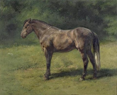 Étude de cheval gris au vert, Rosa Bonheur, musée national du château de Fontainebleau, deuxième moitié du XIXe siècle.