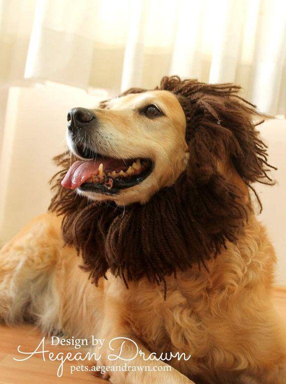 Dog Hat Lion Hat for Dogs Dog Lion Hat Dog Costume Lion