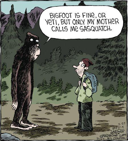 106 best Bigfoot jokes images on Pinterest | Finding ...Bigfoot Comic