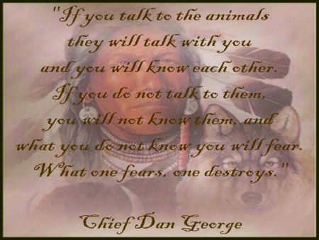 YEP..I have Cherokee blood and I CAN talk to them,,often with just thoughts