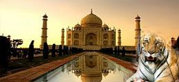 Get the best India tour information and packages by Budget tour to India  and enjoy some relaxing time off from your daily routine.