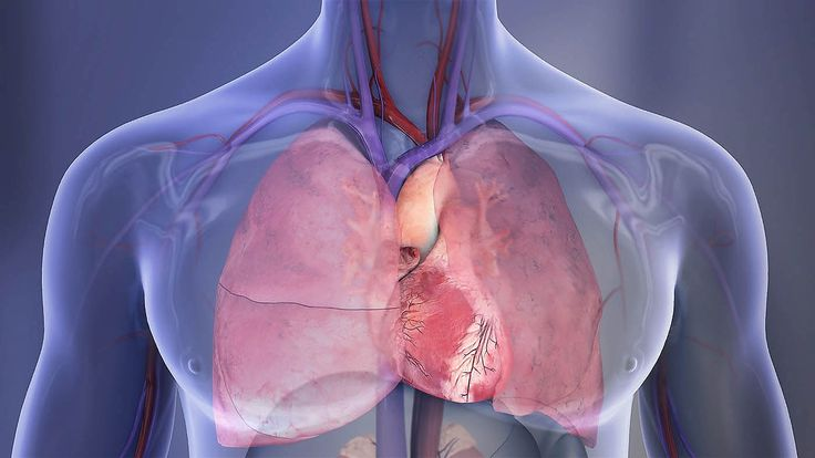 American Heart Association says Targeting Pathway may reduce Cocaine's Cardiovascular Harms