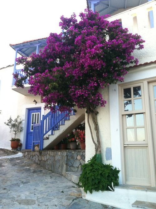 Alonnisos, Greece la nostra isola