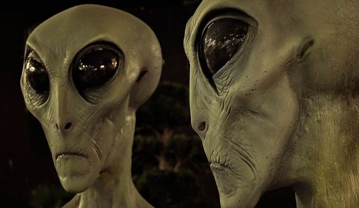 Government Treaty With Large Gray Aliens Requires Full UFO And ET Disclosure In 2016, Conspiracy Theorists Say [Video]
