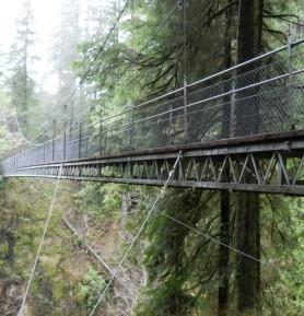 Rainy Day Hikes - Travel Oregon   Travel Oregon