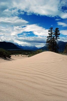 Carcross Desert, located outside Carcross, Yukon, Canada.. the world's smallest desert