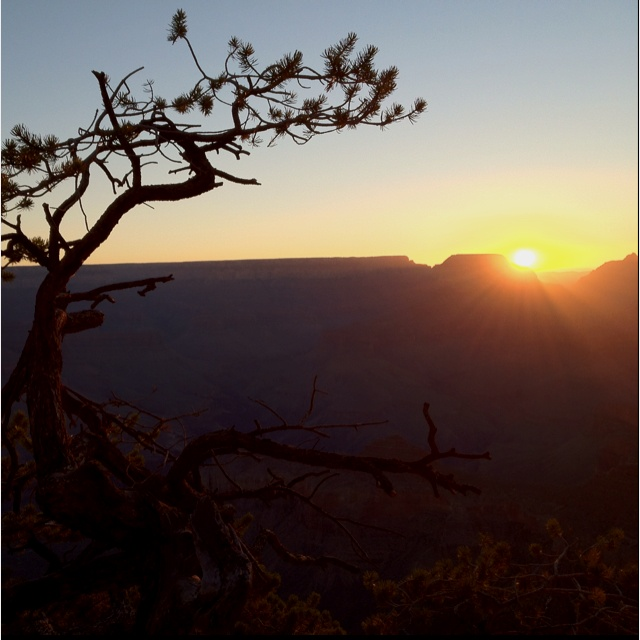 Good morning from the Grand Canyon.