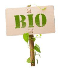 plantes aromatiques bio: plantes condimentaires: plantes médicinales: page numéro un