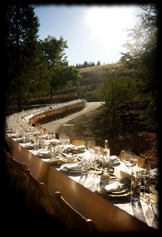 The Signature Single Table Reception Design By Outstanding In Field