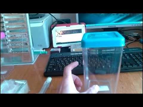 Муравьиная ферма.Как сделать формикарий своими руками - YouTube
