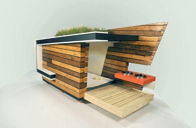 Dog House by alejandro Pijuan