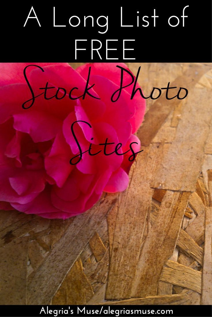 If you're like me and don't have a lot of money to spend on stock photos, you'll be happy to know there are tons of FREE stock photo sites!