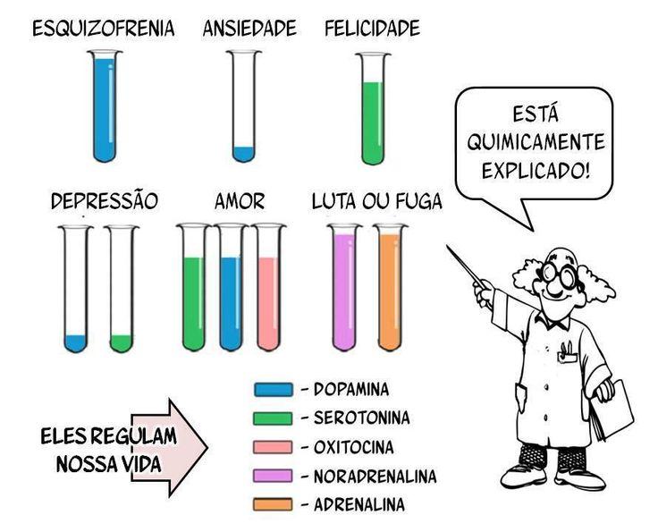 neurotransmissores que regulam a nossa vida