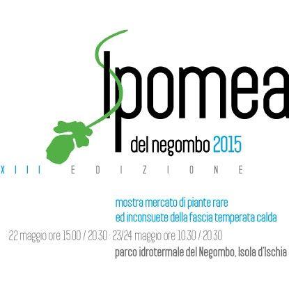 Il giorno 22, 23 e 24 maggio 2015 avrà luogo a #Ischia la 13° edizione di #Ipomea del #Negombo, #mostra e #mercato di #piante rare ed inconsuete :)