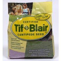 TifBlair® Centipede Grass Seed (5lb.)