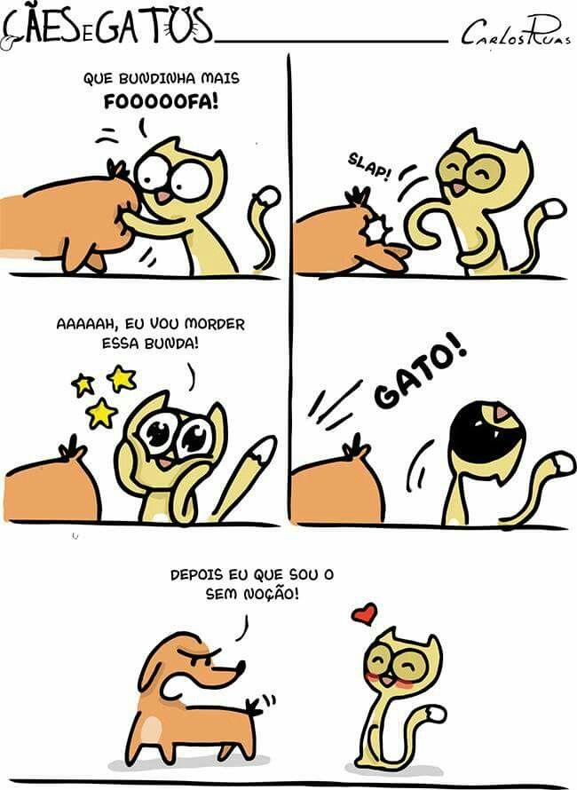 Cães & Gatos - bunda