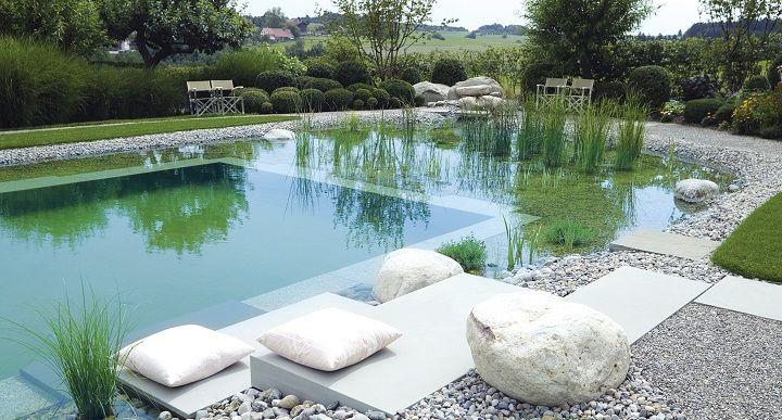 C mo hacer una piscina ecol gica estanques pinterest for Como hacer una alberca ecologica