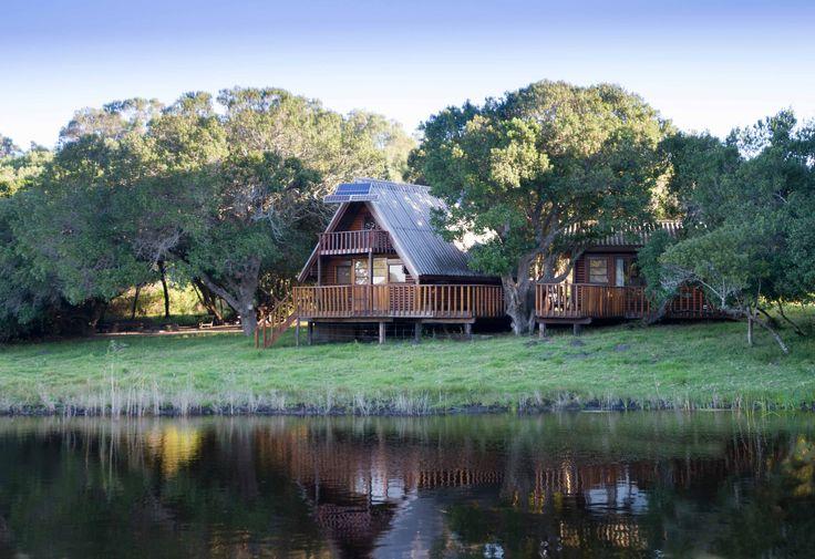 river, cabin
