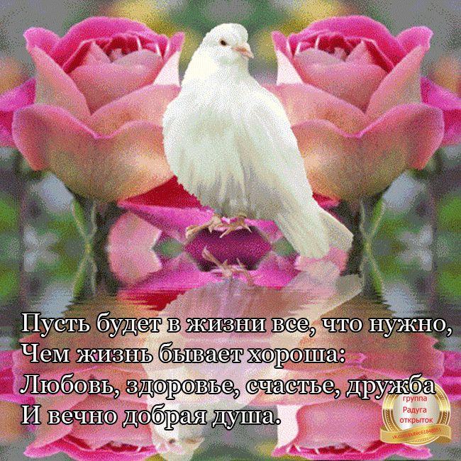 ...Загадай желание на счастье...