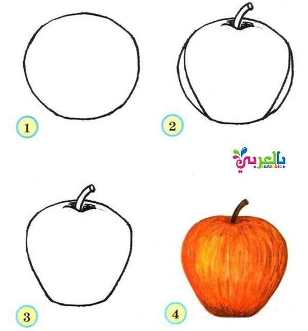 تعليم رسم تفاحة بالخطوات فواكه الصيف للاطفال رسم سهل للاطفال بالخطوات بالعربي نتعلم Pencil Drawings Drawings Art