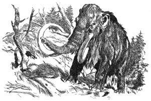 Lovci mamutu. Mamut bez pracloveka.