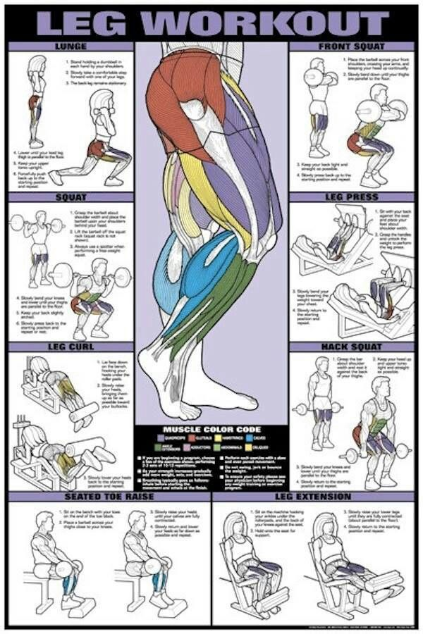 Leg workout #fitness #healthy #workout