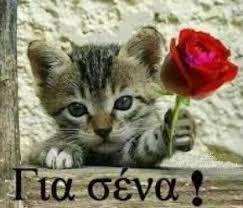 Αποτέλεσμα εικόνας για ευχες για περαστικα στα ελληνικα
