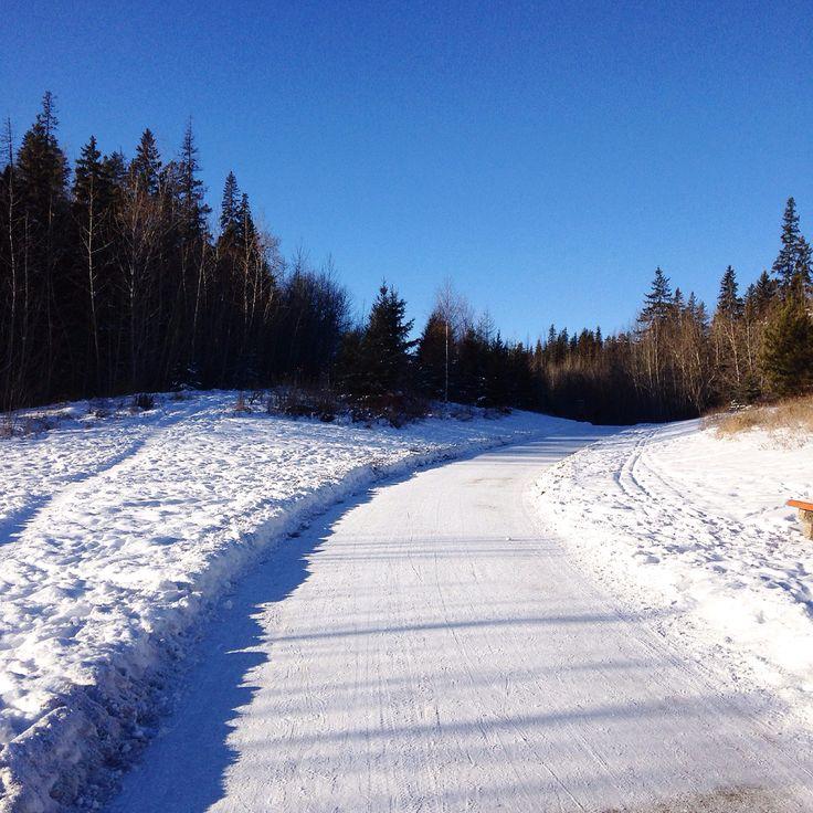 A winter walk through the river valley 2016 Edmonton