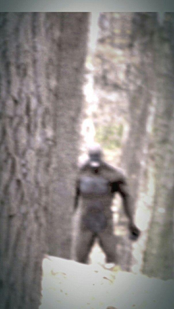 Человек мотылек в приморском крае фото
