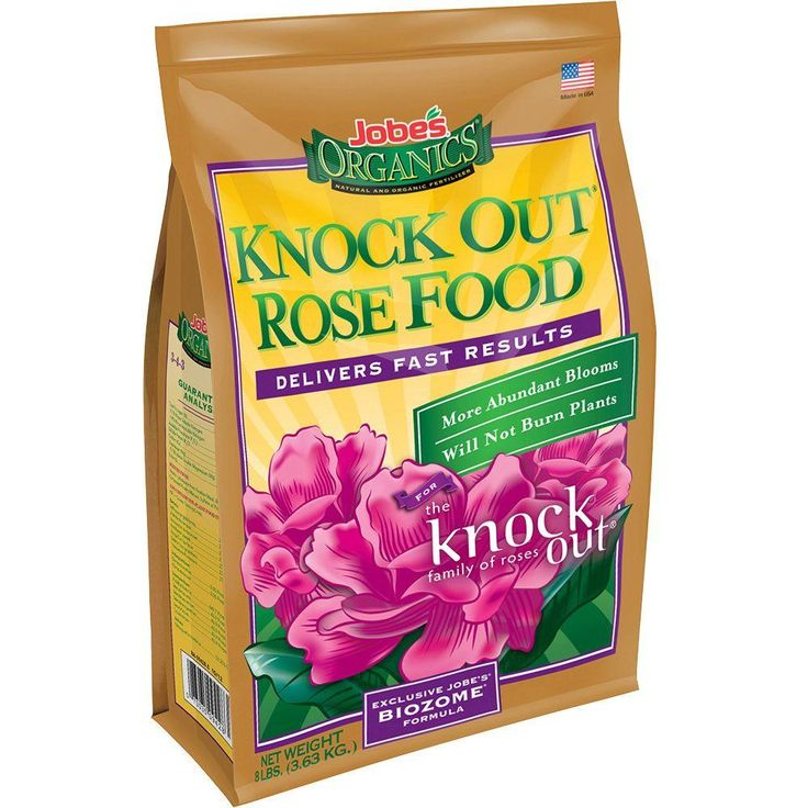 17 best ideas about knockout roses on pinterest backyard for Cuisine rose