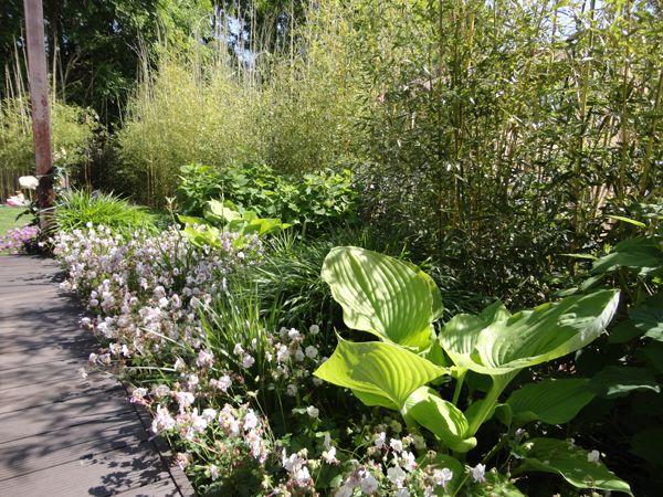 Oltre 20 migliori idee su Progettazione di giardini su Pinterest
